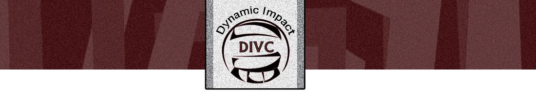 dynamic impact bar