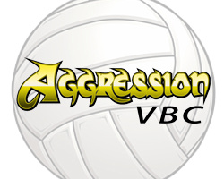 aggression logo