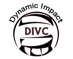 dynamic impact logo